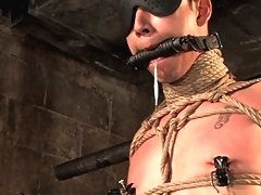 Master Tober suspends slave Brandon hawk and works over his ass.